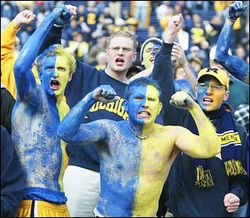 Michigan_fans