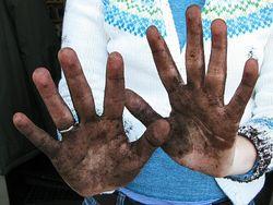 Win08_lynn-dirty-hands